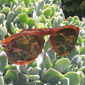 Persol vintage 649 96/33 sun glasses